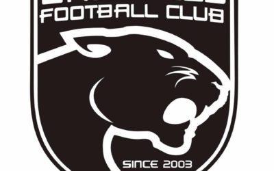 Grésilles Football Club recrute un(e) apprenti(e) Chargé(e) de Promotion et de Marketing Sportif